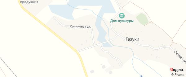 Криничная улица на карте деревни Газуки с номерами домов