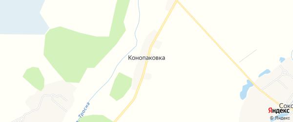 Карта деревни Конопаковки в Брянской области с улицами и номерами домов
