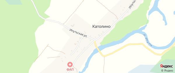 Ипутьская улица на карте села Католино с номерами домов