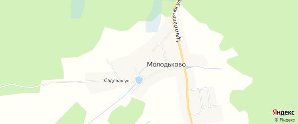 Карта села Молодьково в Брянской области с улицами и номерами домов