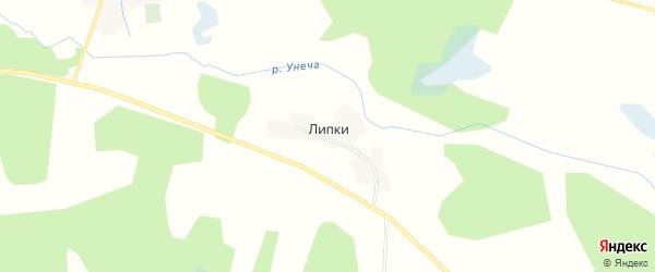 Карта деревни Липки в Брянской области с улицами и номерами домов