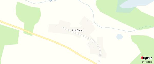 Речной переулок на карте деревни Липки с номерами домов