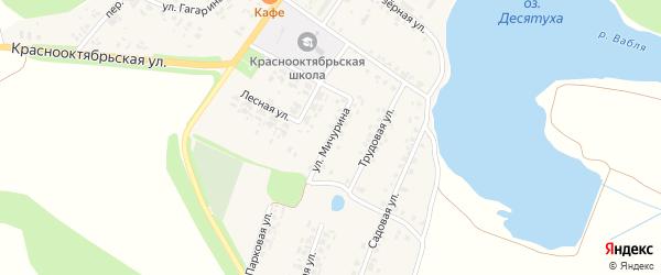 Улица Мичурина на карте поселка Десятухи с номерами домов