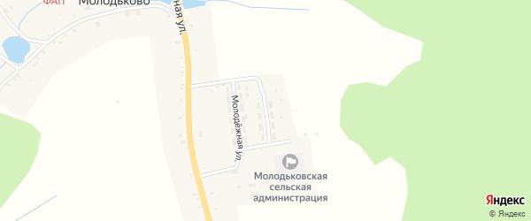 Молодежная улица на карте села Молодьково с номерами домов