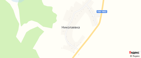 Никольская улица на карте деревни Николаевки с номерами домов