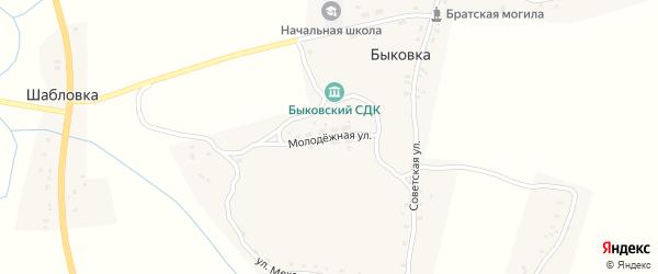 Молодежная улица на карте деревни Быковки с номерами домов