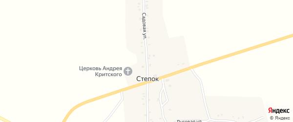 Садовая улица на карте села Степка с номерами домов