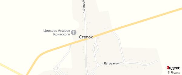 Центральная улица на карте села Степка с номерами домов