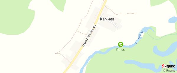 Центральная улица на карте хутора Камнева с номерами домов
