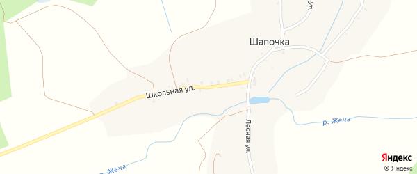 Школьная улица на карте деревни Шапочки с номерами домов