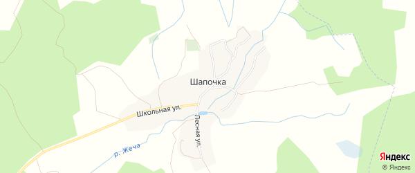 Карта деревни Шапочки в Брянской области с улицами и номерами домов