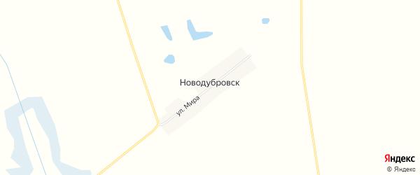 Карта поселка Ново-Дубровска в Брянской области с улицами и номерами домов
