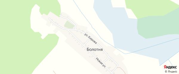 Улица Кирова на карте деревни Болотни с номерами домов