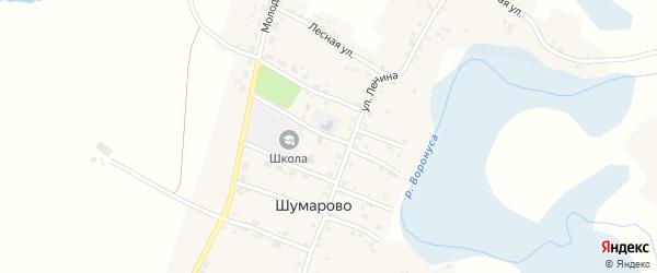 Переулок Афанасьева на карте села Шумарово с номерами домов