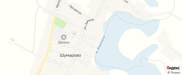 Переулок Буденного на карте села Шумарово с номерами домов