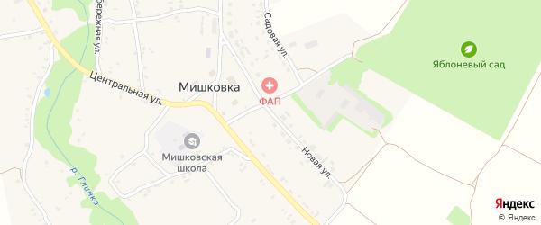 Новая улица на карте села Мишковки с номерами домов