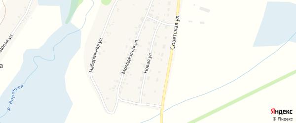Новая улица на карте деревни Ветлевки с номерами домов