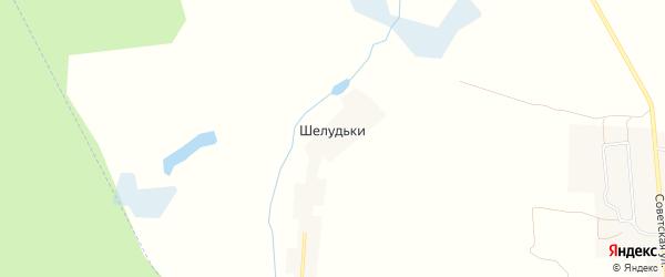 Карта поселка Шелудьки в Брянской области с улицами и номерами домов