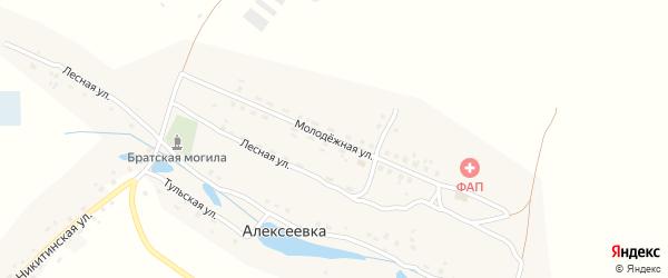 Молодежная улица на карте деревни Алексеевки с номерами домов