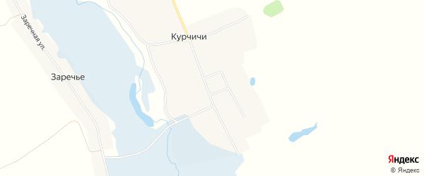 Карта села Курчичи в Брянской области с улицами и номерами домов
