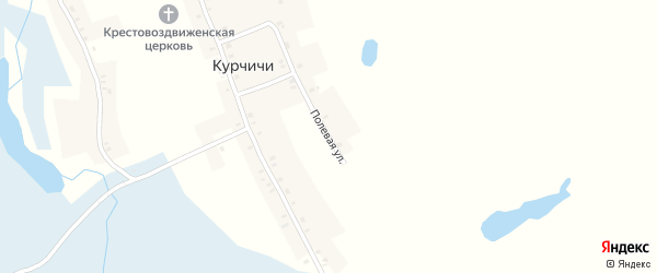 Полевая улица на карте села Курчичи с номерами домов