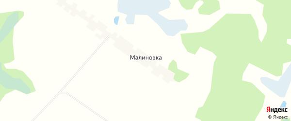 Карта поселка Малиновки в Брянской области с улицами и номерами домов