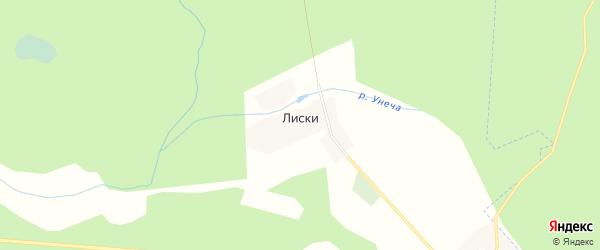 Карта деревни Лисок в Брянской области с улицами и номерами домов