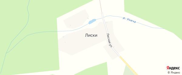 Лесная улица на карте деревни Лисок с номерами домов