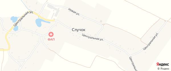Центральная улица на карте деревни Случка с номерами домов