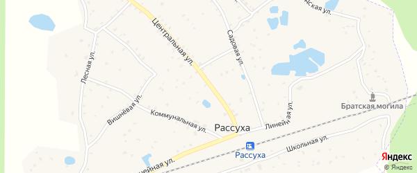 Центральная улица на карте поселка Рассухи с номерами домов