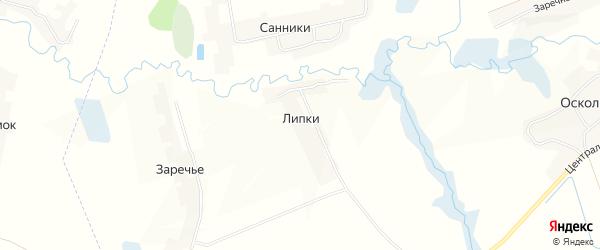 Карта поселка Липки в Брянской области с улицами и номерами домов
