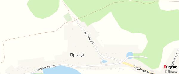 Лесная улица на карте деревни Прыща с номерами домов