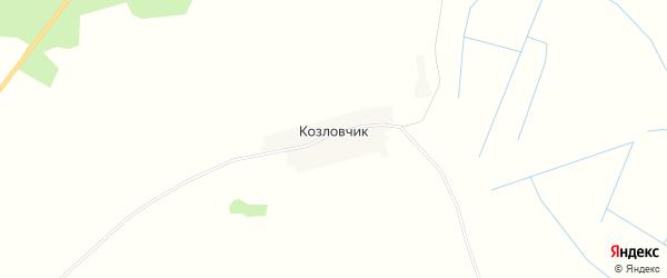 Карта деревни Козловчика в Брянской области с улицами и номерами домов
