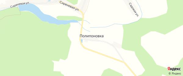 Карта деревни Полипоновки в Брянской области с улицами и номерами домов