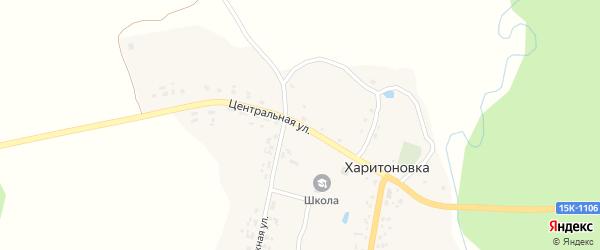 Центральная улица на карте деревни Харитоновки с номерами домов