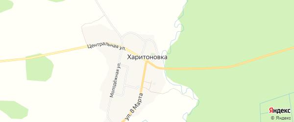 Карта деревни Харитоновки в Брянской области с улицами и номерами домов