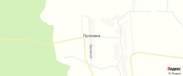 Карта деревни Пучковки в Брянской области с улицами и номерами домов