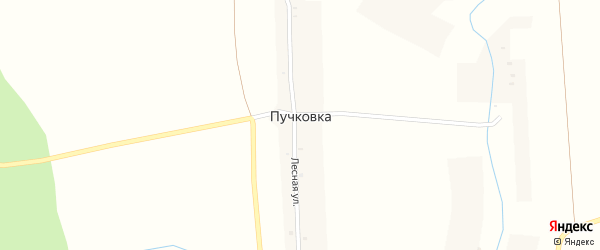 Лесная улица на карте деревни Пучковки с номерами домов