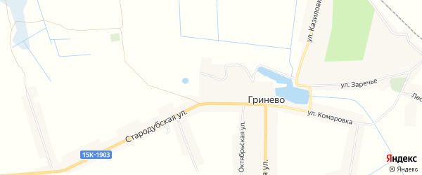 Карта села Гринево в Брянской области с улицами и номерами домов