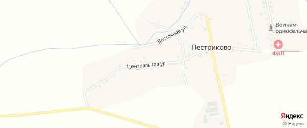 Центральная улица на карте деревни Пестриково с номерами домов
