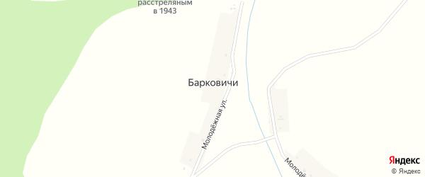 Молодёжная улица на карте деревни Барковичи с номерами домов
