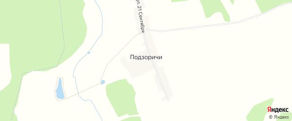 Карта деревни Подзоричей в Брянской области с улицами и номерами домов