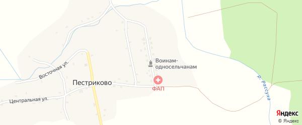 Новая улица на карте деревни Пестриково с номерами домов