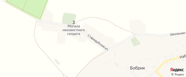 Стародубская улица на карте села Бобрика с номерами домов