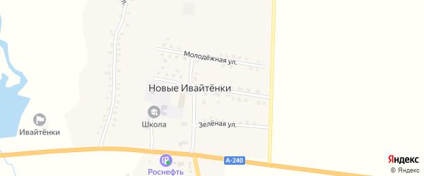 Центральная улица на карте деревни Новые Ивайтенки с номерами домов