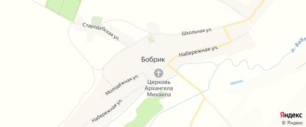 Карта села Бобрика в Брянской области с улицами и номерами домов