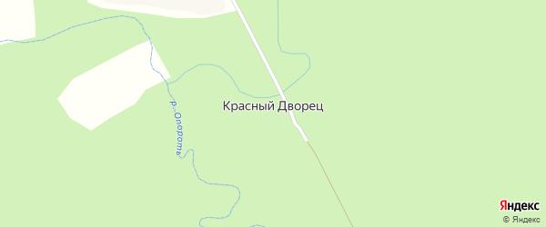 Лесная улица на карте деревни Красного Дворца с номерами домов