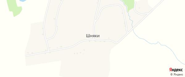Лесная улица на карте деревни Шняки с номерами домов