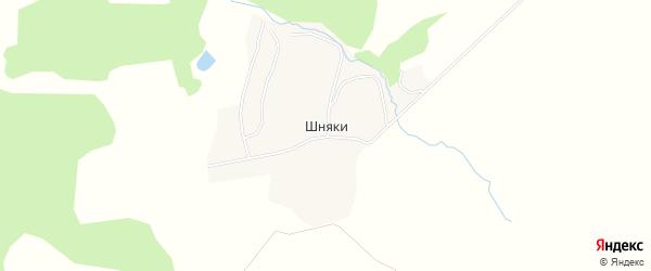 Карта деревни Шняки в Брянской области с улицами и номерами домов
