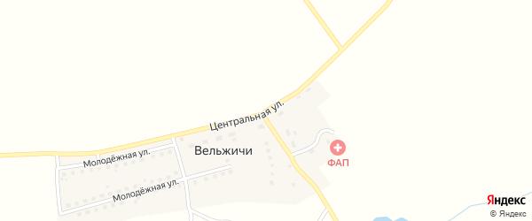 Центральная улица на карте села Вельжичи с номерами домов